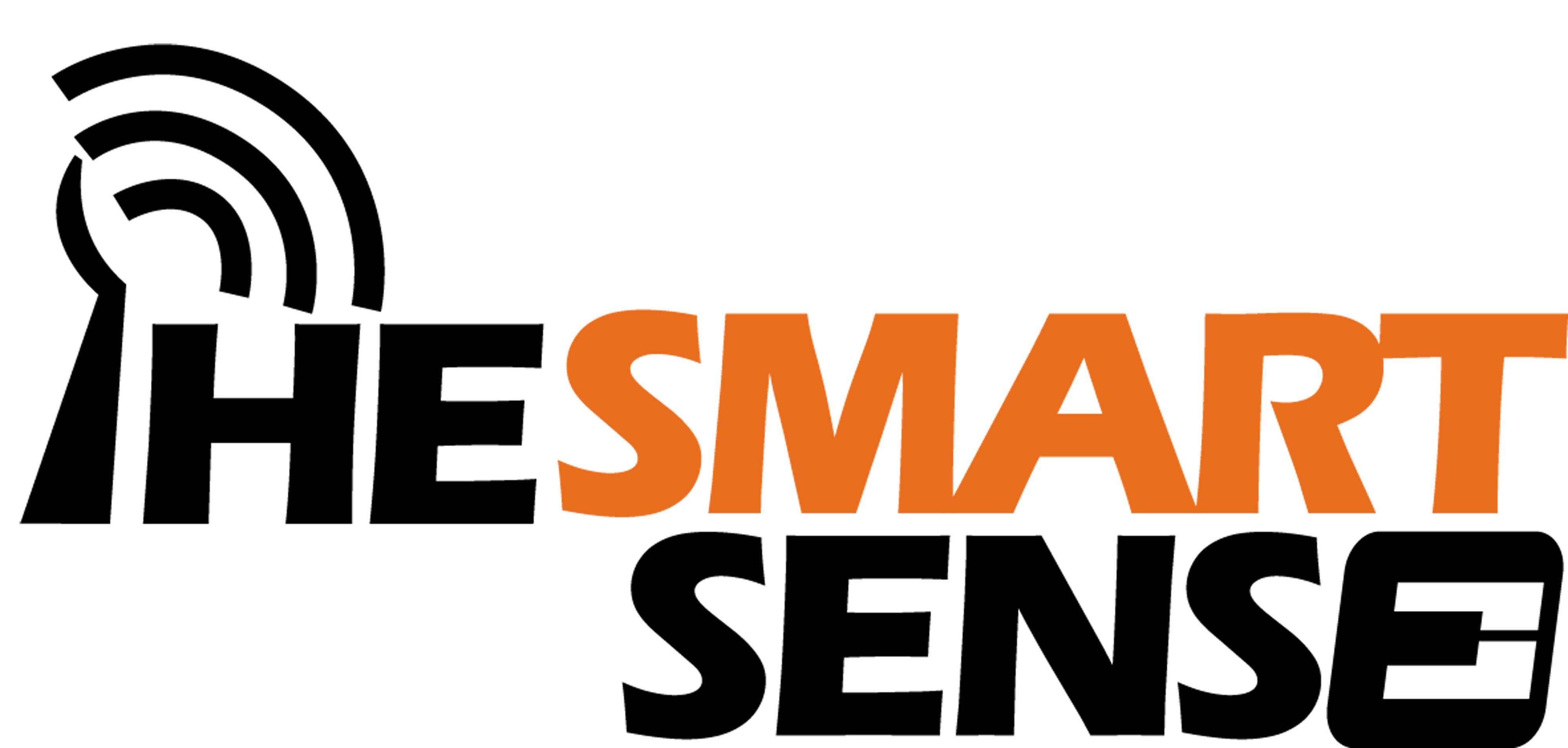 1314761325_TheSmartSense-Logo
