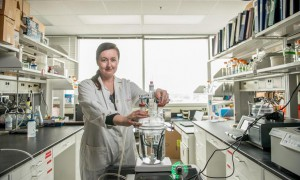 Powerful organic nanowires can be produced cheaply_popup